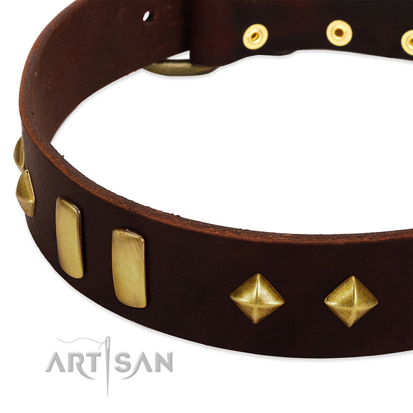 Soft full grain natural leather dog collar with inimitable adornments