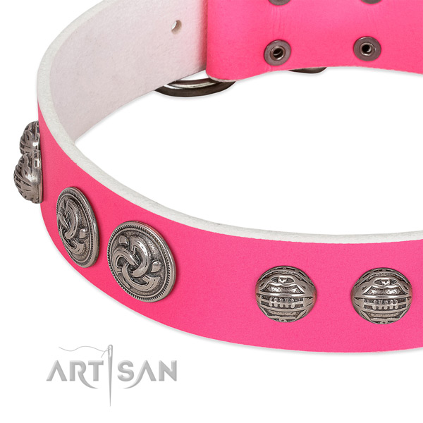 Durable buckle on genuine leather collar for daily walking your dog