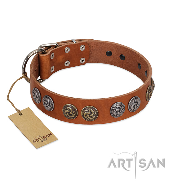 Fancy walking soft genuine leather dog collar with embellishments