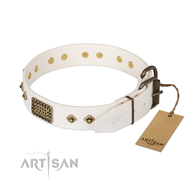 Full grain natural leather dog collar with rust resistant hardware and studs