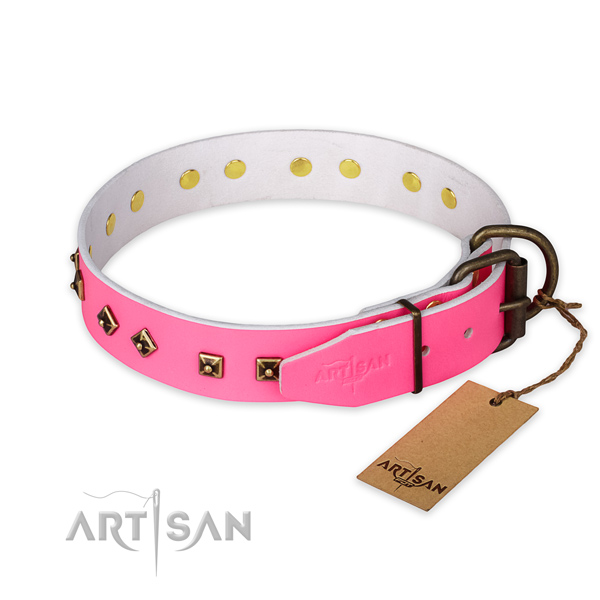 Reliable fittings on natural leather collar for stylish walking your pet