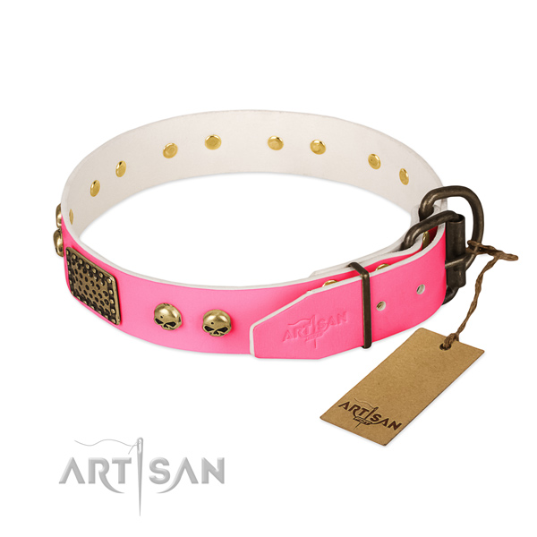 Rust-proof decorations on basic training dog collar