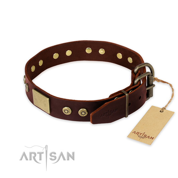 Rust resistant adornments on comfortable wearing dog collar
