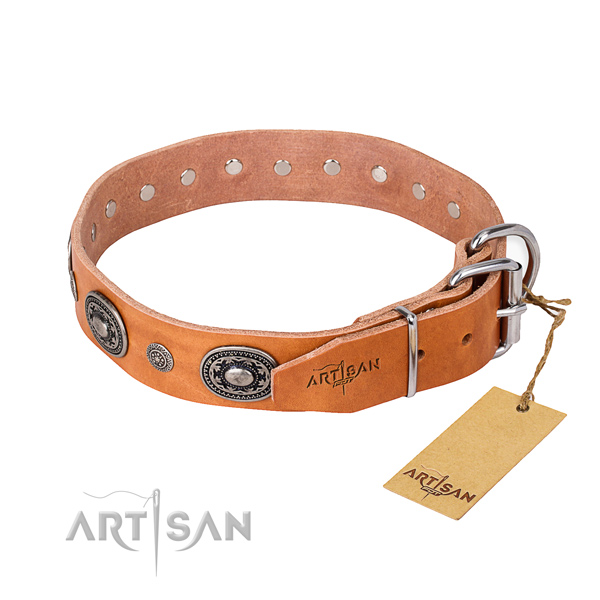 Strong leather dog collar handmade for daily walking