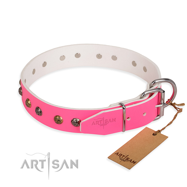 Full grain leather dog collar with fashionable rust resistant embellishments