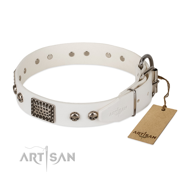 Corrosion resistant embellishments on handy use dog collar