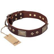 """Loving Owner"" FDT Artisan Decorated Leather Cane Corso Collar with Plates and Studs"