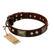 """Magic Amulet"" Brown Leather Cane Corso Collar with Skulls and Plates"
