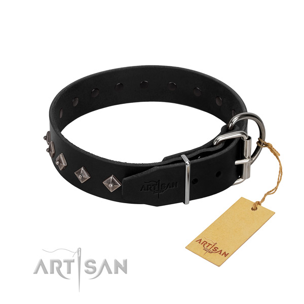 Natural leather dog collar with top notch adornments for your canine