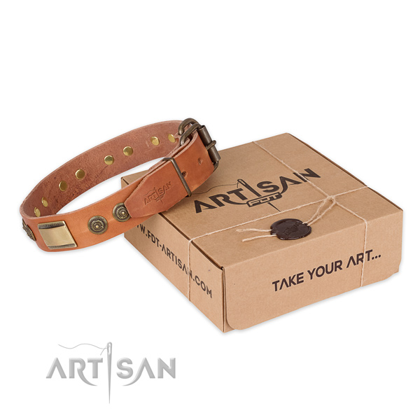 Corrosion proof hardware on leather dog collar for handy use
