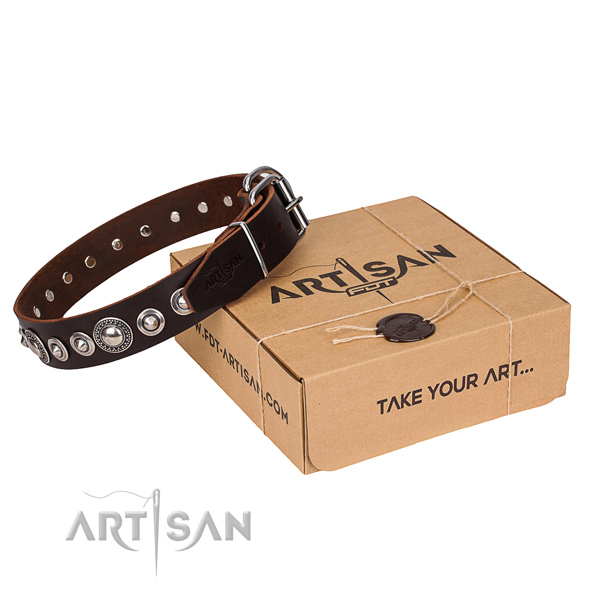 Full grain natural leather dog collar made of gentle to touch material with strong traditional buckle