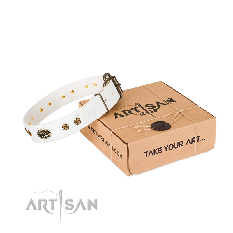 Corrosion proof buckle on leather dog collar for your four-legged friend