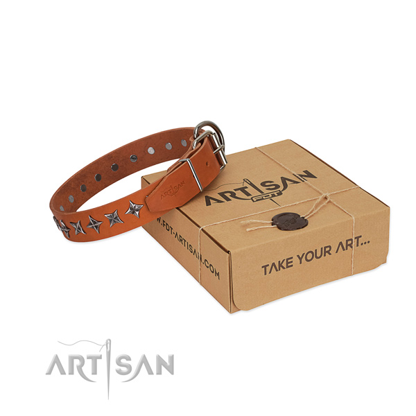 Handy use dog collar of top notch full grain leather with embellishments