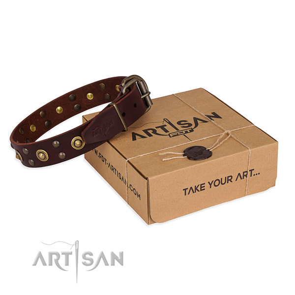 Rust resistant hardware on leather collar for your beautiful canine
