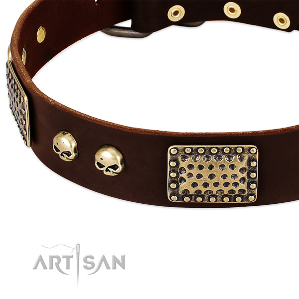 Rust-proof adornments on leather dog collar for your dog