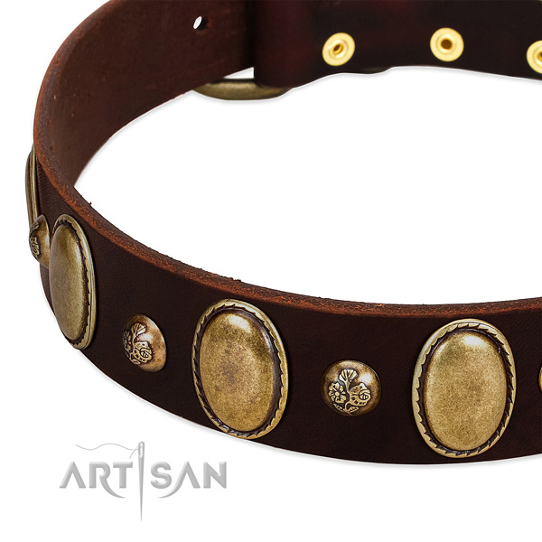 Full grain leather dog collar with stunning embellishments