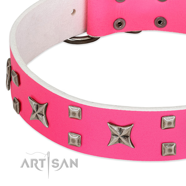 Fashionable leather collar for your doggie walking