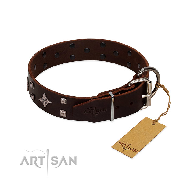 Incredible genuine leather collar for your dog everyday walking