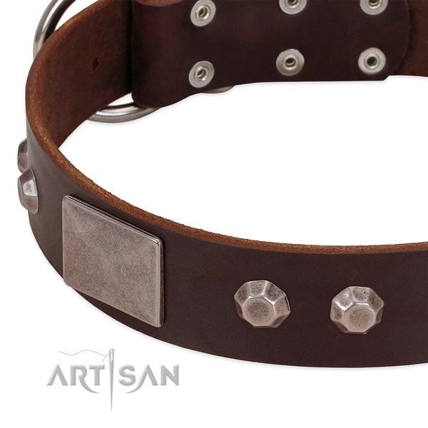 Comfortable wearing quality leather dog collar