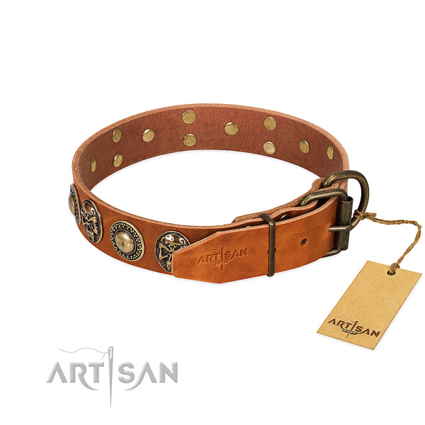 Reliable traditional buckle on walking dog collar