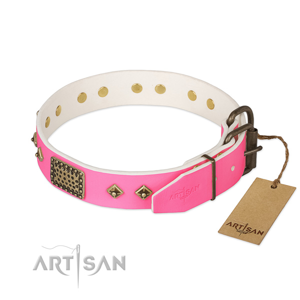 Rust resistant buckle on comfortable wearing dog collar