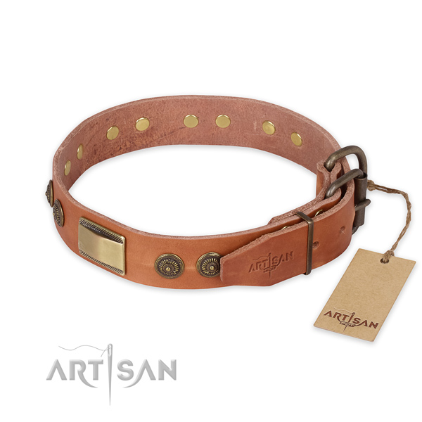 Rust-proof buckle on full grain natural leather collar for fancy walking your pet