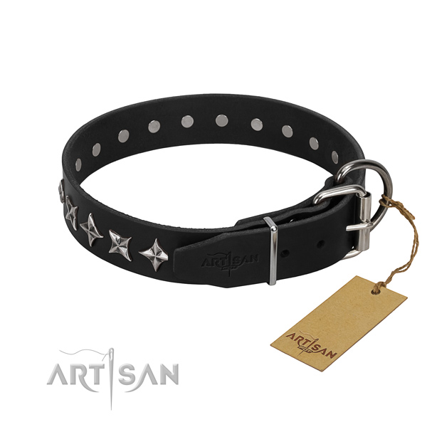Everyday walking studded dog collar of durable natural leather