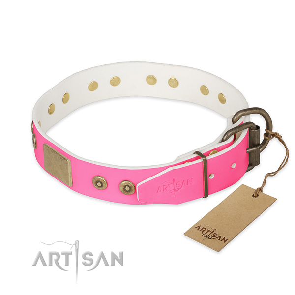 Corrosion proof hardware on basic training dog collar