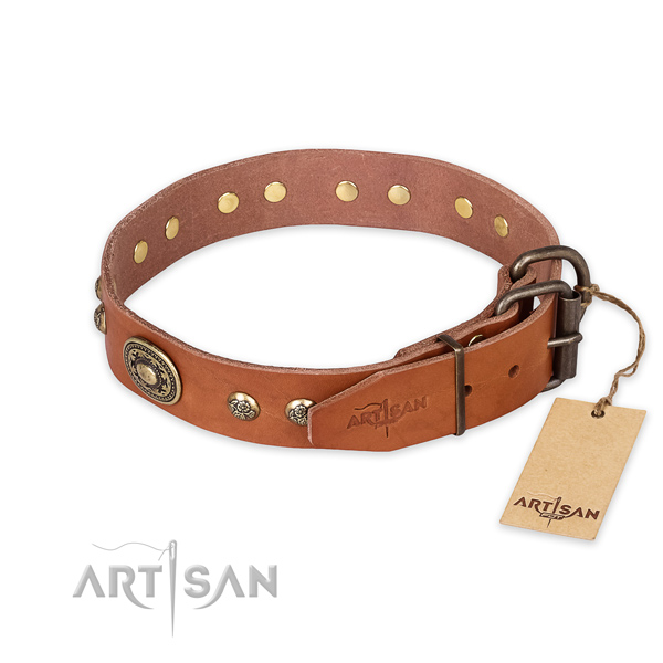 Durable buckle on full grain natural leather collar for basic training your four-legged friend