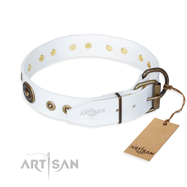 Genuine leather dog collar made of reliable material with rust resistant studs
