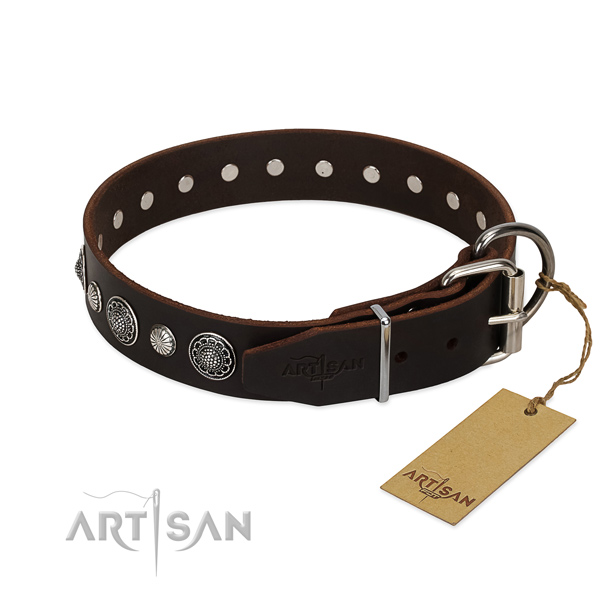 Finest quality full grain natural leather dog collar with amazing decorations