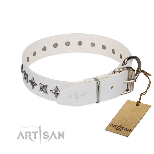 Daily walking adorned dog collar of strong full grain leather