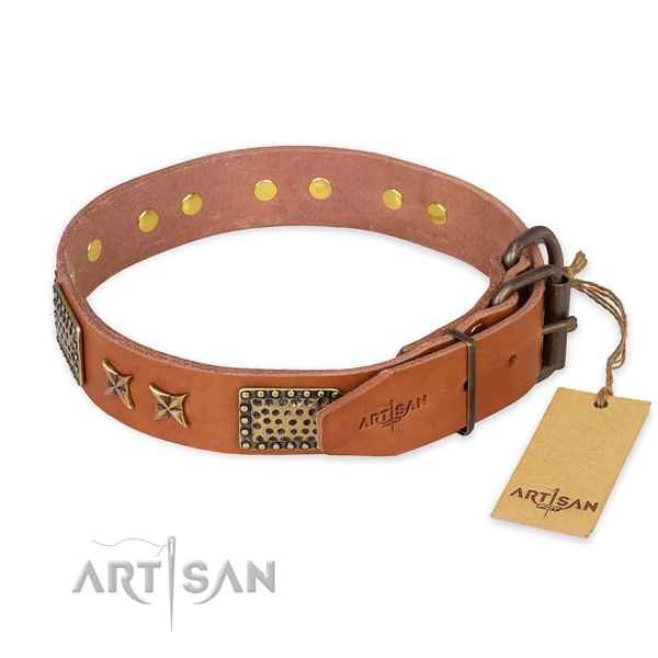 Reliable buckle on full grain leather collar for your beautiful pet