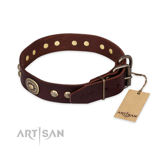 Rust-proof traditional buckle on full grain leather collar for walking your pet