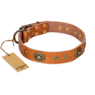 """Dandy Pet"" FDT Artisan Handcrafted Tan Leather Cane Corso Collar"