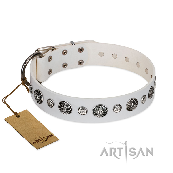 Top notch leather dog collar with corrosion proof hardware