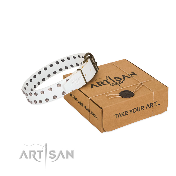 Top notch natural leather dog collar with embellishments for your handsome canine