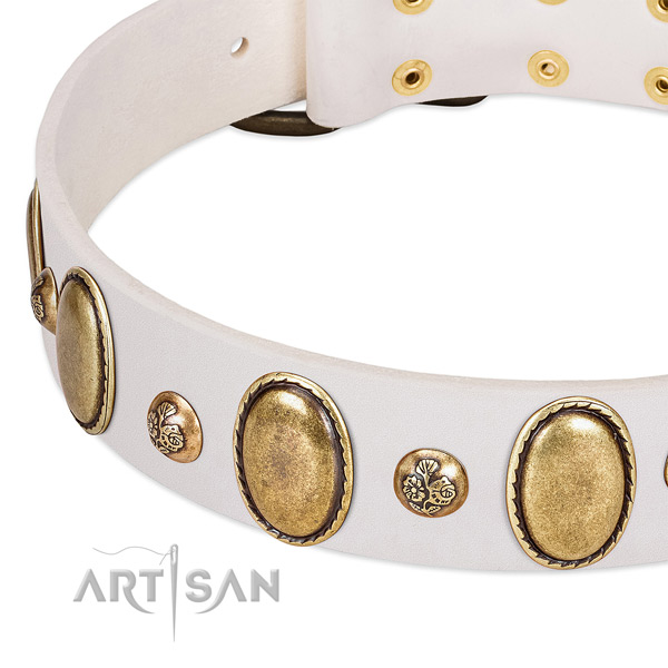 Full grain natural leather dog collar with fashionable studs