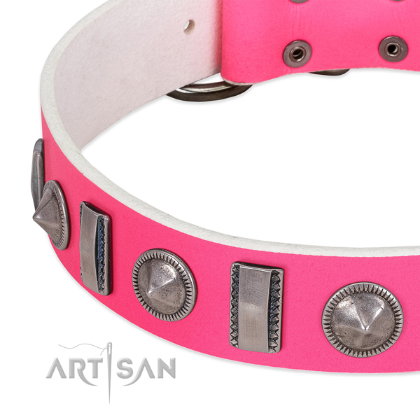 Unusual studded full grain natural leather dog collar for comfortable wearing
