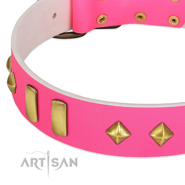 Soft full grain genuine leather dog collar with remarkable adornments