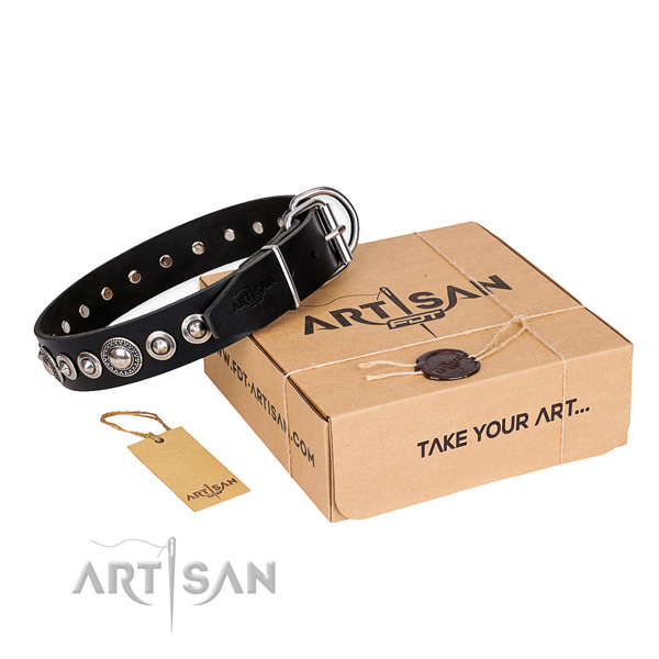 Top quality full grain leather dog collar