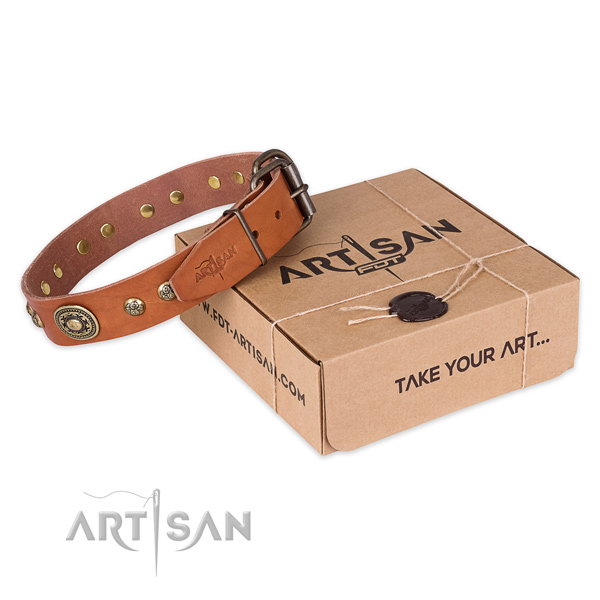 Rust resistant buckle on natural leather dog collar for fancy walking