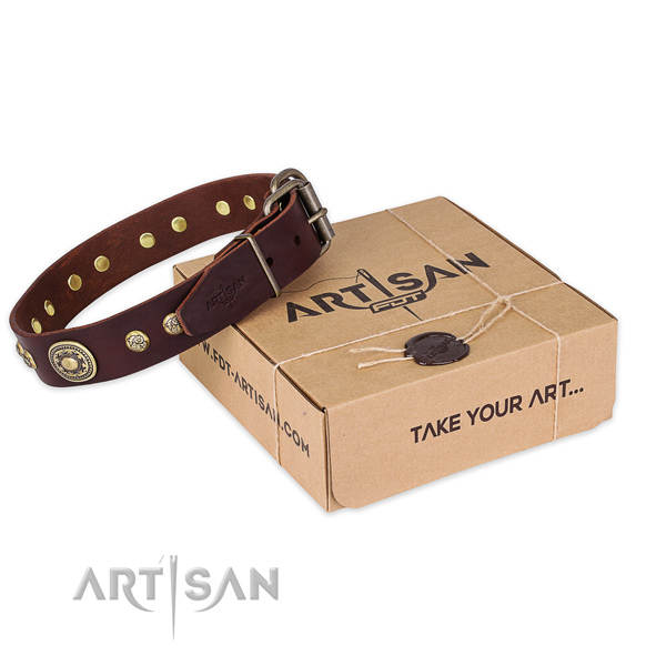 Rust-proof hardware on full grain genuine leather dog collar for walking