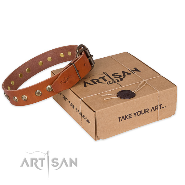 Reliable hardware on full grain leather collar for your attractive canine