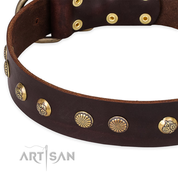 Natural genuine leather collar with corrosion proof D-ring for your impressive dog