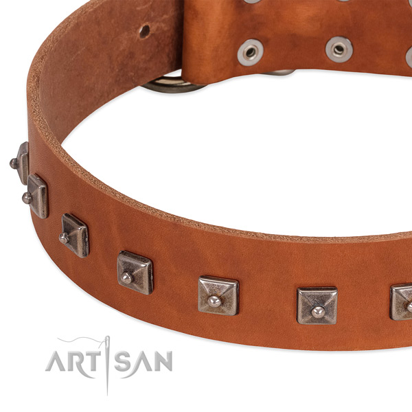 Soft full grain leather dog collar with incredible decorations