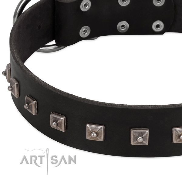 Quality natural leather collar with decorations for your canine