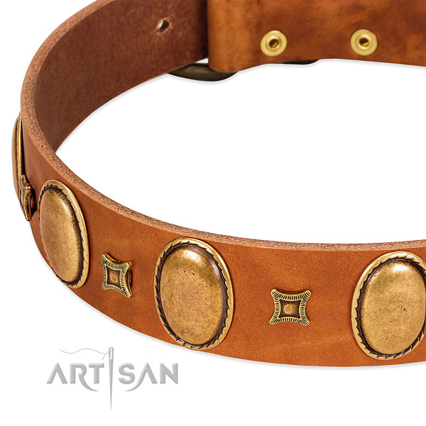 Natural leather dog collar with corrosion proof buckle for everyday walking