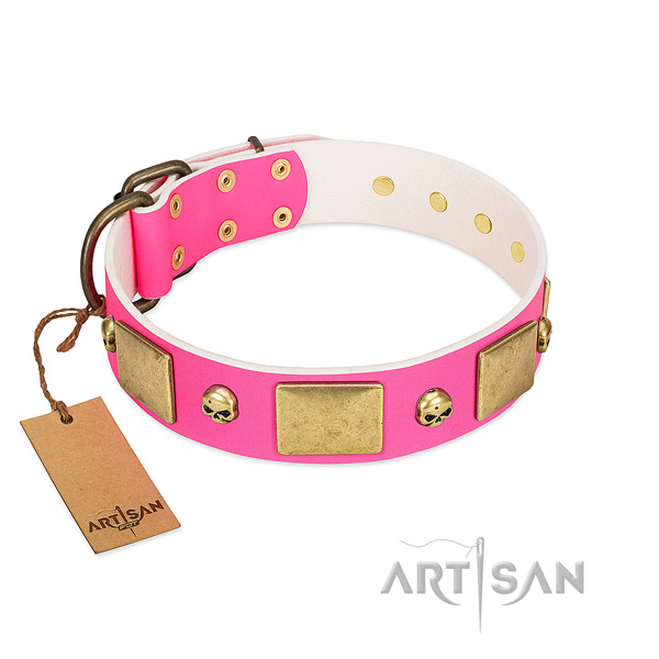 Best quality leather collar with corrosion resistant embellishments for your doggie