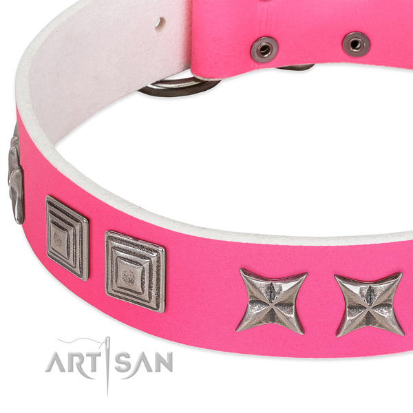 Reliable leather dog collar with rust resistant hardware